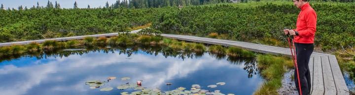 pohodnistvo-lovrenska-jezer