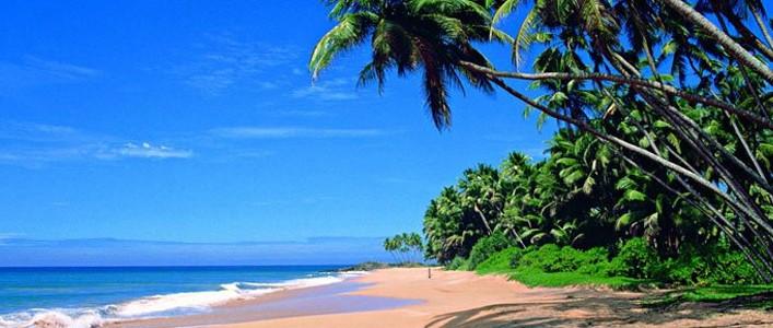 Šrilanka Turistična agencija